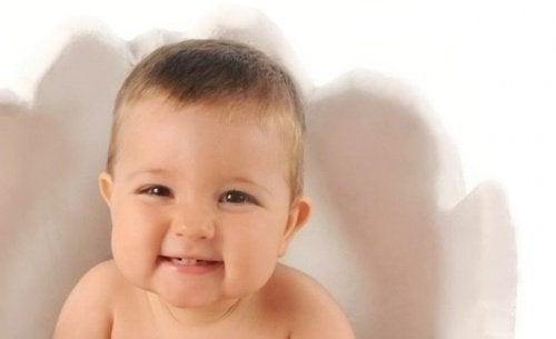 glad bebis