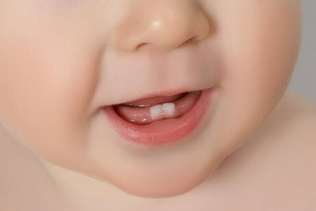 Bebisens första tänder: allt du behöver veta