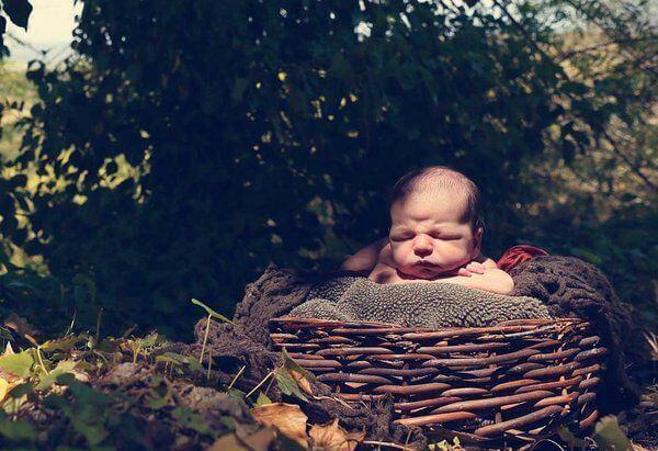 Bebis i korg