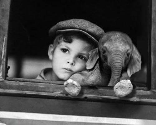 Pojke med elefant.