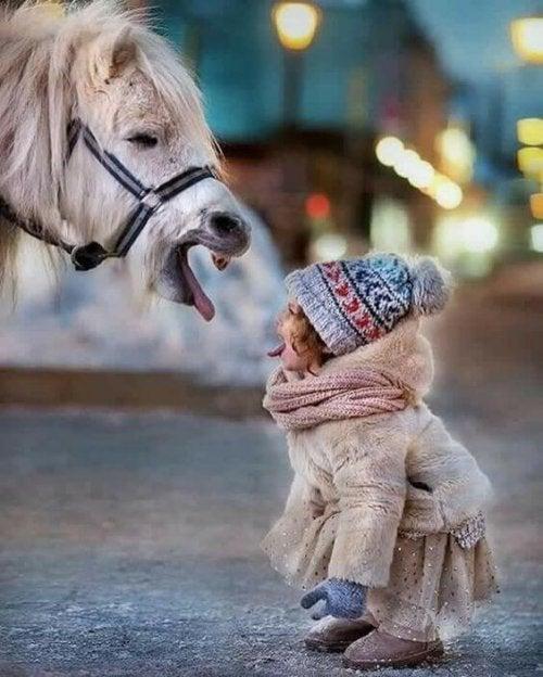 Flicka och häst.