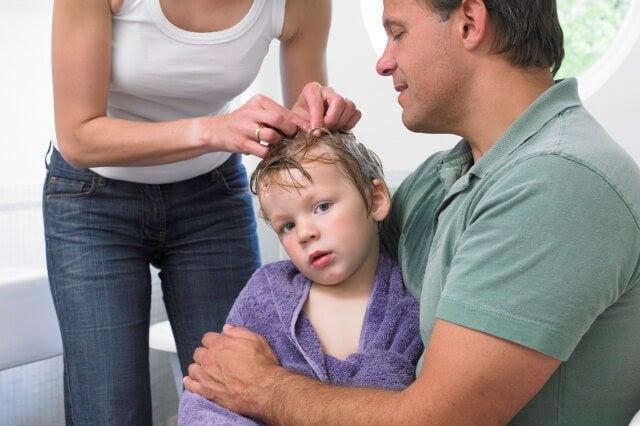 7 tips för att förebygga och bli av med huvudlöss