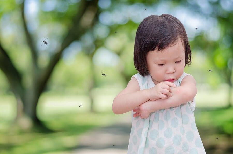 Ständigt stucken av mygg? Vissa barn drabbas oftare!