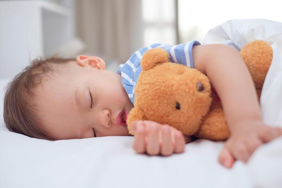 Bebis sover med nalle
