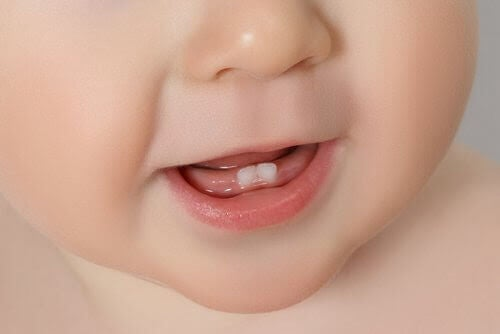 Bebismun med två tänder