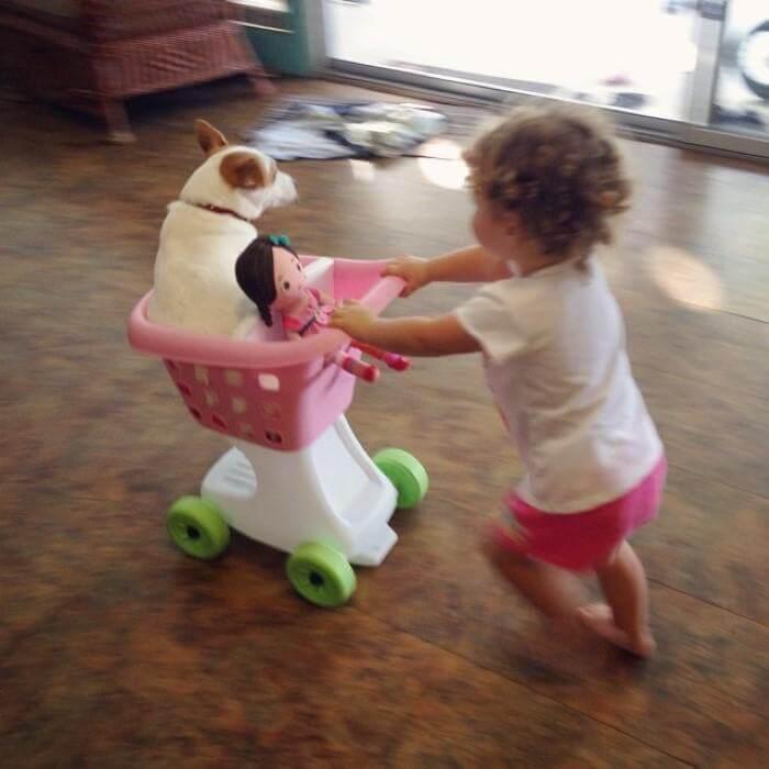 litet barn kör hund i leksakskundvagn