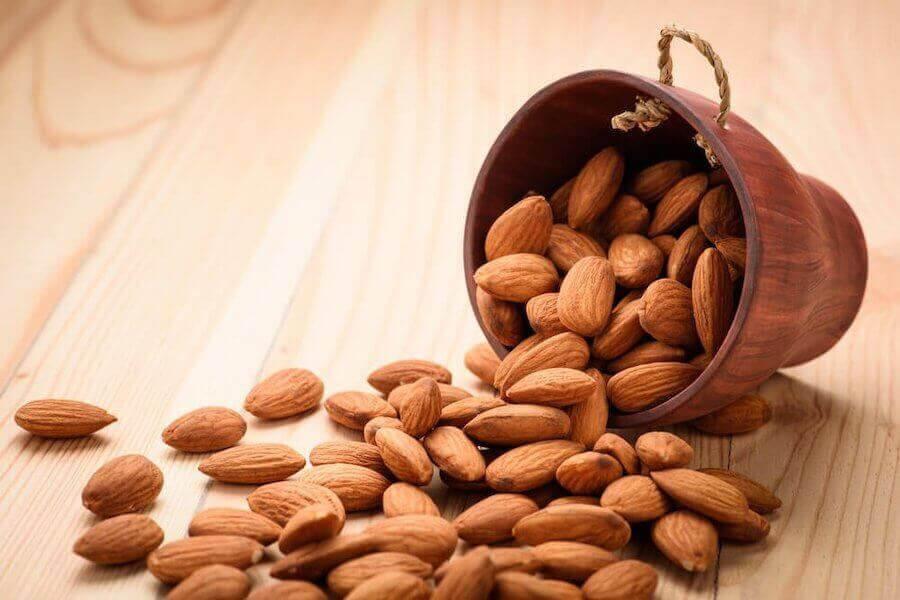 ditt immunförsvar: mandlar