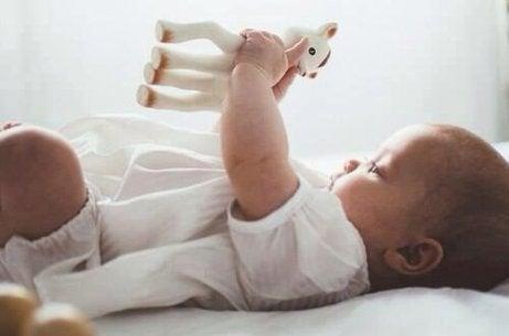Bebis ligger på rygg och håller i en giraff leksak.