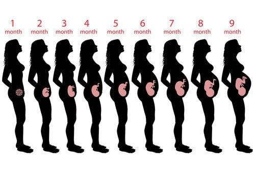 Vad du kan förvänta dig under vecka 9 av graviditeten
