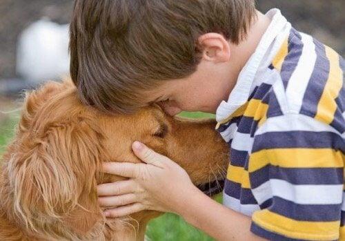 5 fördelar med husdjur i familjen