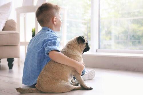 De bästa småhundarna för barn