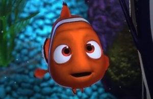 Hitta Nemo.