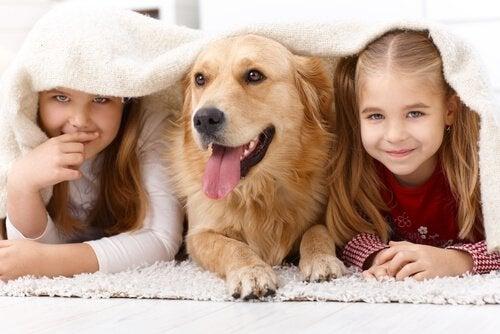 Varför barn tycker om djur så mycket