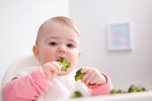 BLW: baby äter broccoli