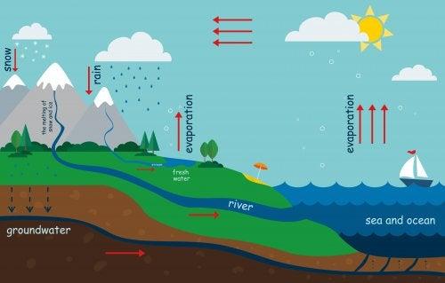 Hur man kan förklara vattnets kretslopp för barn