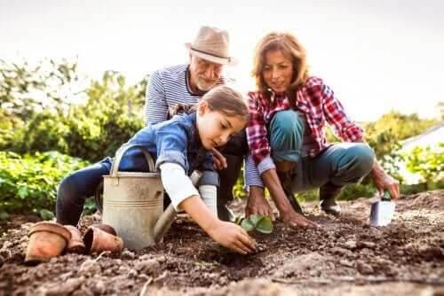 Morföräldrarnas roll i sina barnbarns liv