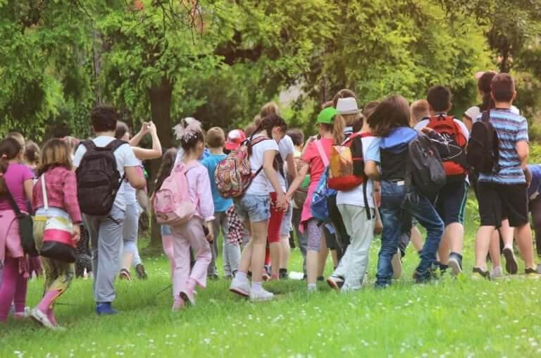 olyckor på skolutflykter: barn på utflykt i skogen