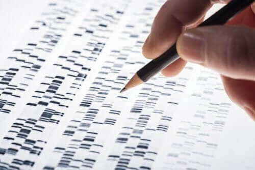 NIPT: resultat av DNA-sekvensering