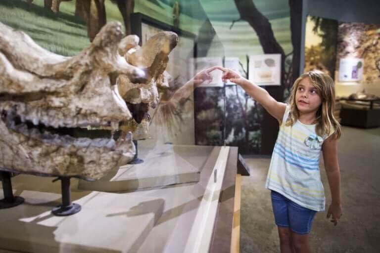barn på museum