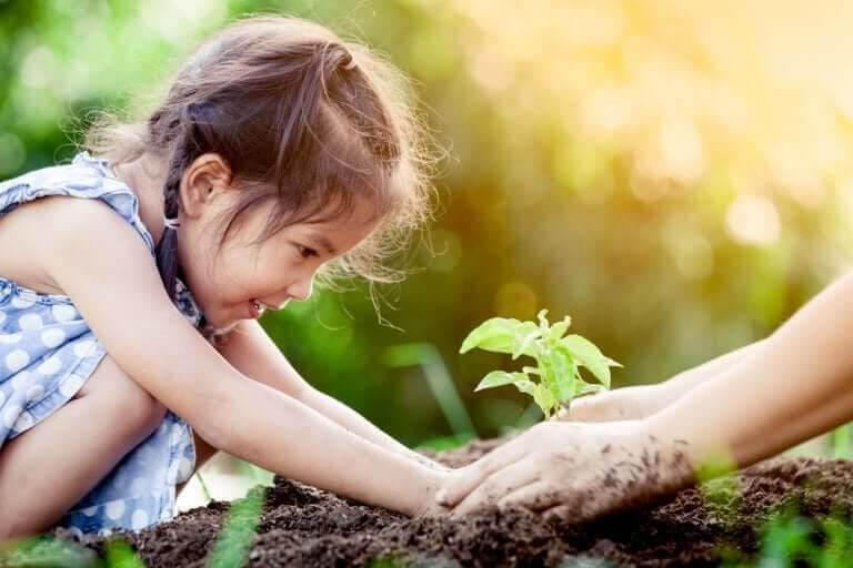 empirisk inlärning: barn planterar planta