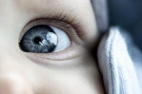 grus i ögonen på morgonen