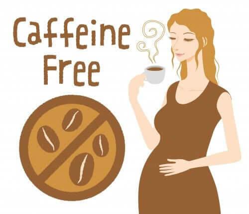 koffein under graviditeten
