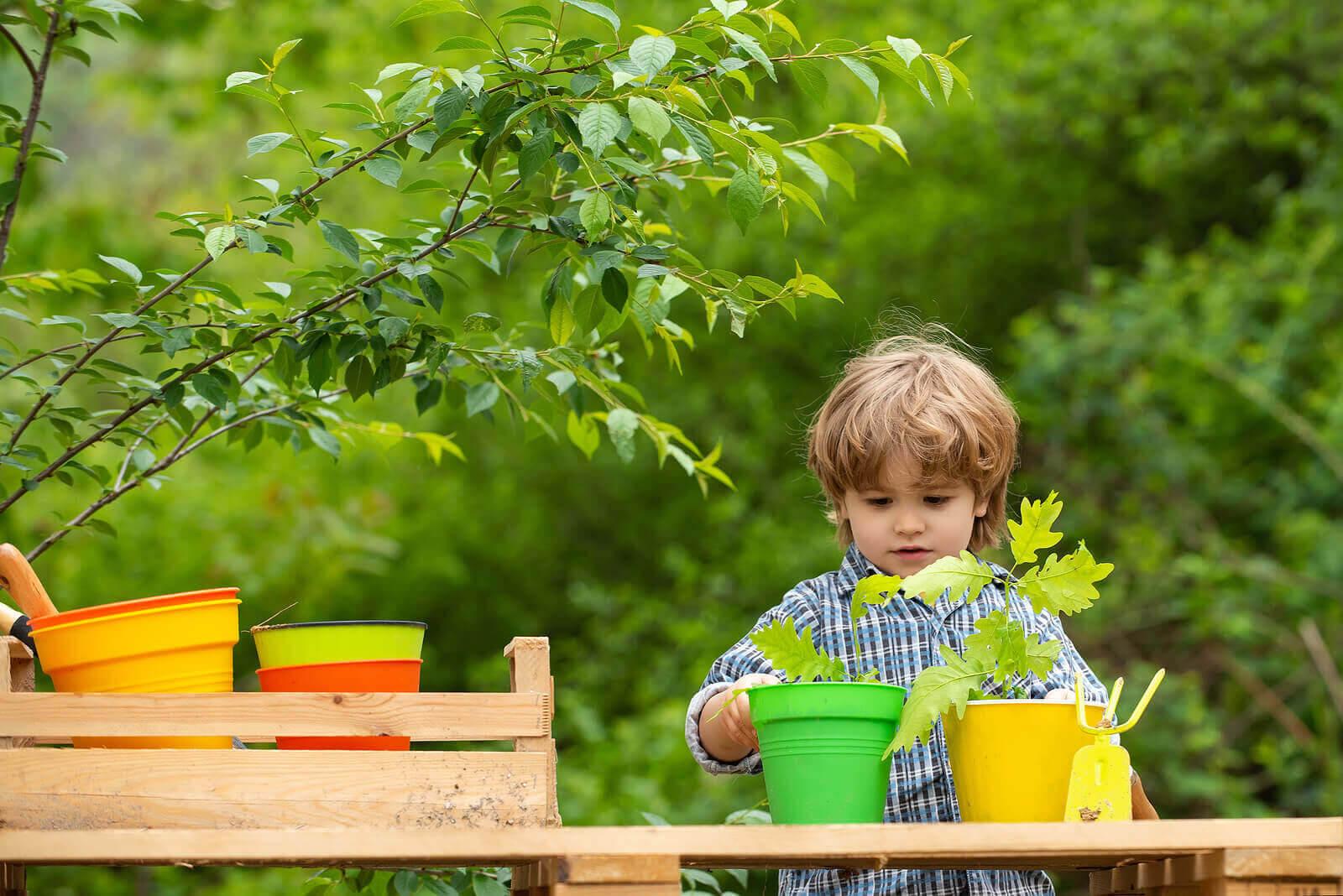 aktiviteter för miljömedvetenhet: pojke planterar träd