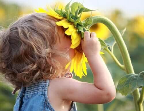 kan älska sig själva: barn luktar på solros