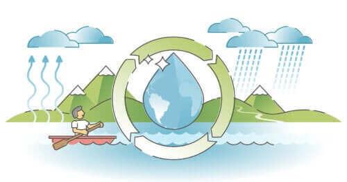 Hur man förklarar vattnets omlopp för barn