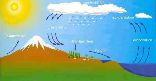 Detaljerad engelsk illustration av vattnets omlopp.