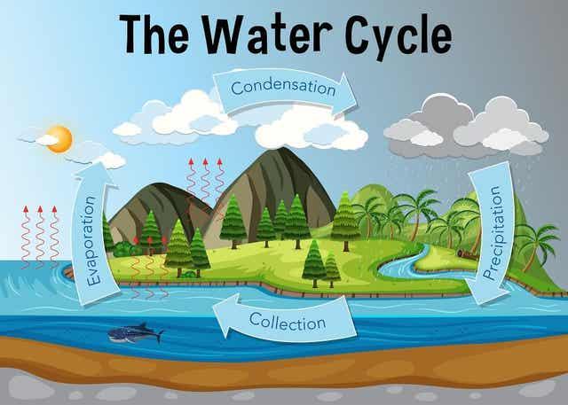 Illustration vattnets omlopp