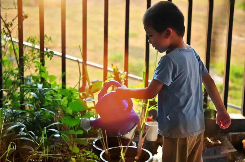 Ett barn som lär sig att ta ansvar genom att vattna blommorna