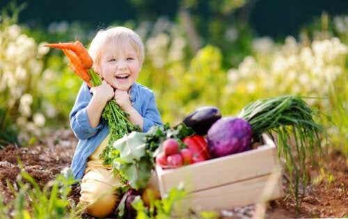 Vegansk kost för spädbarn: vad du bör veta